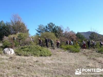 Senderismo Hayedo de Montejo (Senderismo Madrid-Senderismo Guadalajara-Senderismo Segovia); la rioja